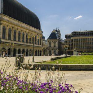Acheter un appartement dans le 1er arrondissement de Lyon : à quoi s'attendre ?