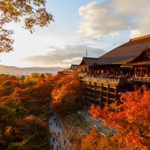 La transaction immobilière vue… du Japon